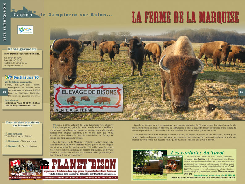 Elevage de Bisons (70)